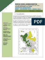 Boletin Estacional Noviembre -Diciembre 2015 y Enero 2016