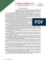 Curriculo TINI.pdf