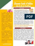 Newsletter CRESS Des Îles de Guadeloupe - Novembre 2015