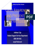 Gang Awareness and Prevention Strategies