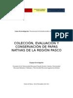 proyecto papas nativas 1 concurso[1].doc