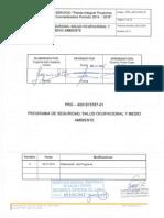 Plan SSO 2015 RyQ Chuquicamata