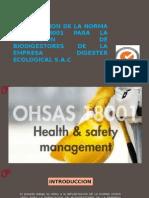 Ohsas 18001- Caso- Digestor