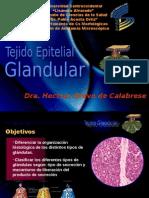 Glandular  Dra. Bravo