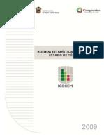 AgendaEstadisticaBasicaEdoMex-2009