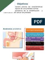 Seminario de Patologia Prostatica