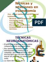 Técnicas y Orientaciones en Neuroanatomía