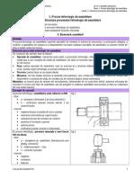 _Structura Proces Tehnologic