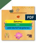 VadukaTelugulo ApaPrayogalu వాడుక తెలుగులో అపప్రయోగాలు