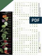 Calendario Verduras