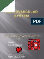 cardiovascularsystem fkm 2013