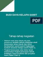 Budidaya Sawit
