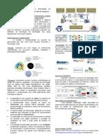 Coin Modelo Governança com Base em Análise Preditiva de Processos