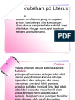 4perubahan Fisiologis Masa Nifas