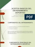 Conceptos Basicos Del Entrenamiento Deportivo