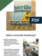 Guerrilla Gardening Power Point