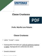2 Bimestre Aula 2. Classe Crustacea - PDF