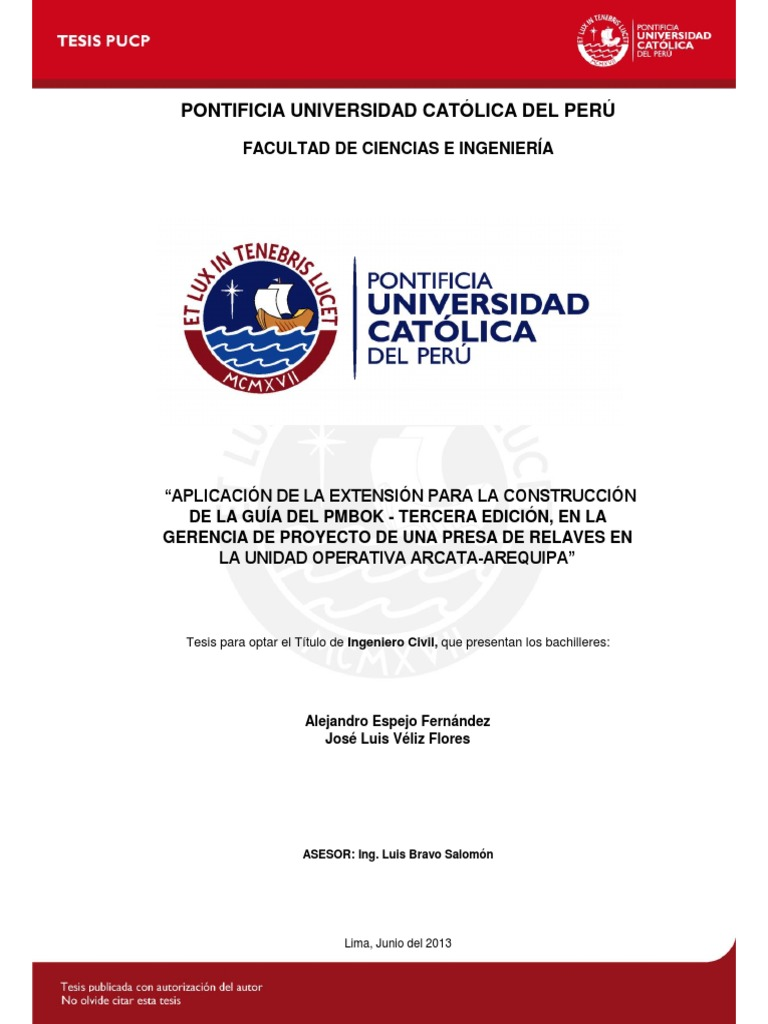 247964461 Espejo Alejandro Guia Pmbok Proyecto Presa Relaves