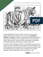 El Tigre de Bengala