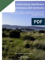 Redes y Estructuras Familiares en La Experiencia Del Territorio Chiloe