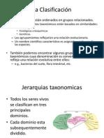 04_Clasificacion de bacterias