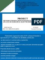 Pesticide Organoclorurate