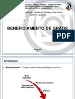Beneficiamento de Grãos (EAA)