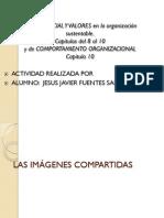 Capitulo_8_al 10_capital Social y Valores y Cap 10 Comp Org Javier_fuentes