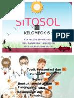 Sitosol