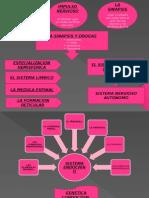 MAPA MENTAL UNIDAD II.pptx
