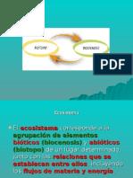 ECOSISTEMA BIOLOGIA