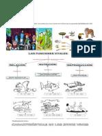 Guía de Naturales 1 Periodo 2015