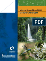 Informe_Geoambiental_Carabobo