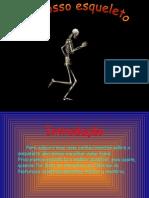 O Nosso Esqueleto