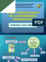 BASES CONCEPTUALES Enfermeria Comunitaria