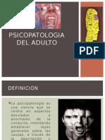 Tema N_ 1 Psicopatología Del Adulto