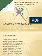 Picaduras y Mordeduras