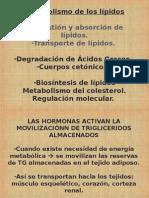 Metabolismo de Lipidos Odontologia