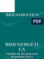4. Bioenergética Blog