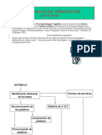 Caracteristicas Lectoras.ruta Lexica
