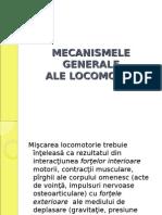 Mecanismele Generale Ale Locomoţiei.doc