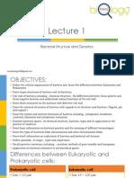 Bacterial Structure & Genetics