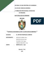 Practica n 4 Biotecnologia