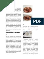 Detrminacion de Peroxidasa