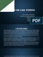 Cas Findus