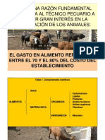 Clase Nutrición PA 2012