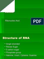 RNA PowerPoint