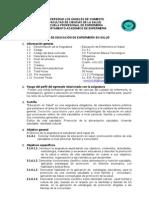 Silabo de Educacion de Enfermeria en Salud 2009 -i