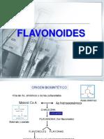 Flavonoides.pdf
