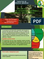 8. POLITICAS (Promoción del desarrollo sostenible).pptx